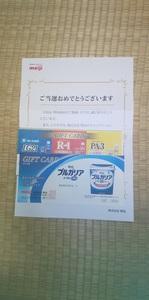 DSC_2473.JPG
